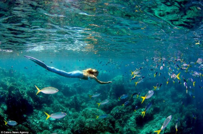 Sereia-nadando-com-peixes